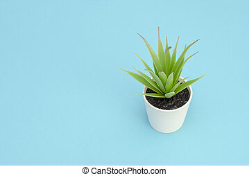 Artificial green flower with leaves in a pot on blue