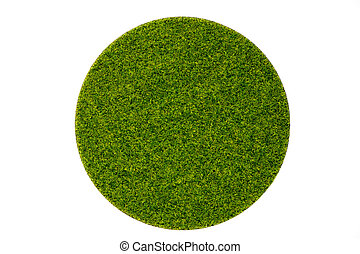 Artificial green grass in round plate on white background