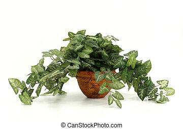Artificial House Plant - Artificial houseplant with painted...