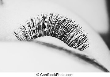 Artificial lashes. eyelash extension