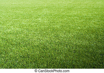 Artificial lawn on the foolball/soccer field, suitable as a ...
