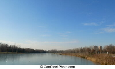 Artificial pond in Parco Nord in the north of Milan
