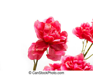 Artificial red flowers on a white background