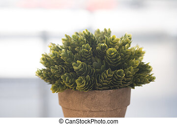 Artificial small green plant in an flower pot