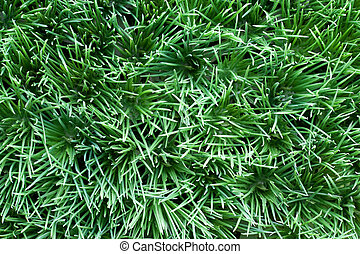 Artificial turf - Close-up of artificial turf as a...