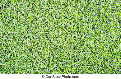 Artificial Turf - The green long artificial turf background