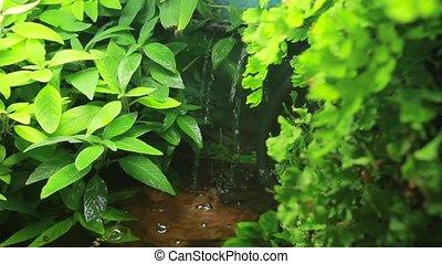 Artificial waterfall in tropical city garden. Vertical pan. Close up