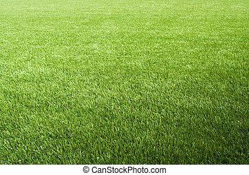 artificiel, pelouse, sur, les, foolball/soccer, champ