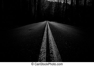 Artisctic Black and White Street Photography of an Empty Road Through Mountain Woods.