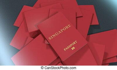 Artist rendering Singapore travel passport.