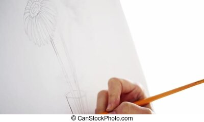 artist with pencil drawing still life on paper
