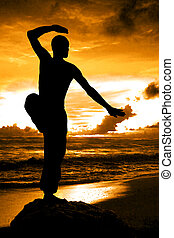 artista marziale, silhouette, con, arancia, tramonto