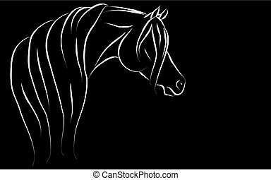 Artistic Arabian Horse Head - Artistic Arabian horse head...