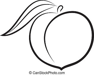 Artistic outline sketch of peach. Vector illustration