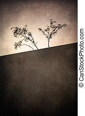 Artistic Trees - Artistic image of desert trees against a...