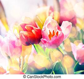 artistico, sbiadito, fondo, di, primavera, tulips