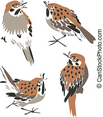 artistiek, vogel, illustratie