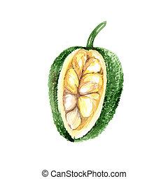 artocarpus