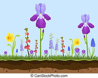 artoon field flowers, green grass and earth layers on blue background vector illustration. Pink, chamomile and lavender iris. Spring and summer field flowers.