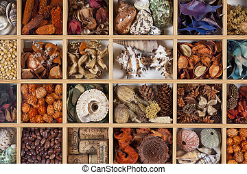 Arts & Crafts - Hobby of making picture displays of shells,...
