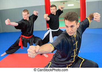 arts martiaux, classe