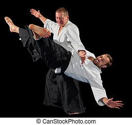 arts martiaux, hommes, combattants