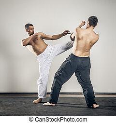arts martiaux, maître