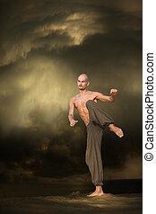 arts martiaux, porte formation