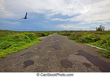 Aruba landscape - A deserted road on the Caribbean Island, ...