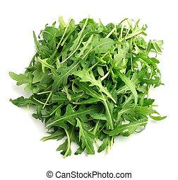 Arugula salad isolated .