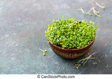 Arugula sprouts in a bowl. Vegetarian food, health or cooking concept, copy space