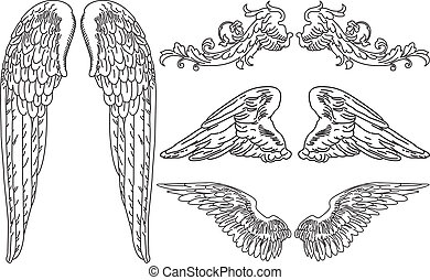 asas, anjo