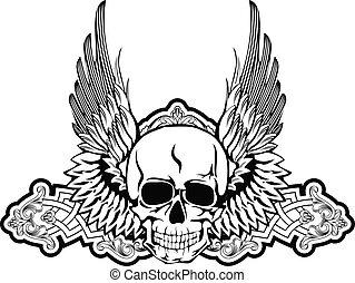 asas, cranio