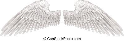 asas, ilustração
