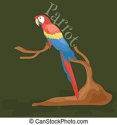 asas, macaw, papagaio, doméstico, isolado, ilustração, tropicais, fundo, vetorial, animais estimação, bico, pictograms, branca, animal, pássaro