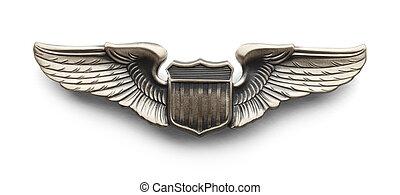 asas, piloto