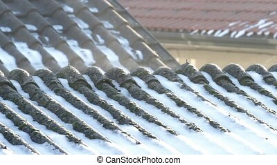 asbestos roof - Evaporation on asbestos roof covering in the...