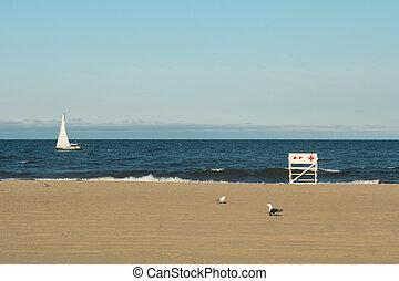 asbury, liget, tengerpart, közben, napnyugta
