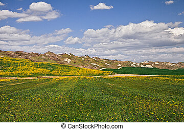 Asciano, Siena, Tuscany, Italy: landscape hills in the area...