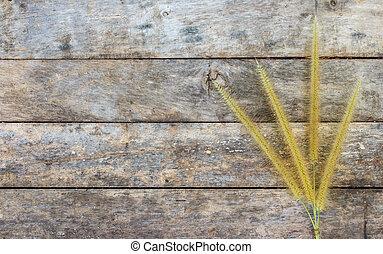 asciutto, erba, fiore, su, pavimento legno