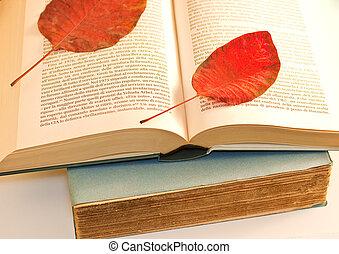 asciutto, libro aperto, foglia