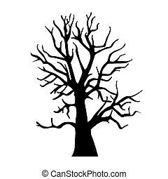 asciutto, silhouette, legno, vecchio