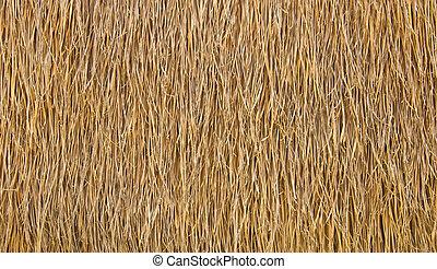 asciutto, straw., fondo, o, struttura