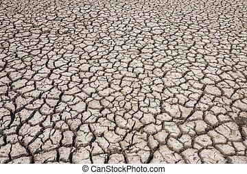 asciutto, terra, suolo, sfondi, arid., textured, siccità