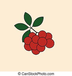 Ash Berry Bunch Icon Autumn Season Concept Vector...