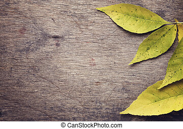 ash leaves on old wood table, fall background