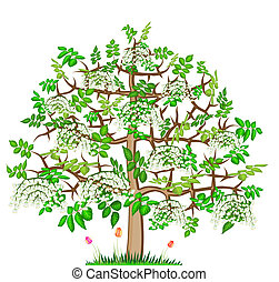 Mountain ash abstract spring lonely blossom big tree with flowers illustration isolated
