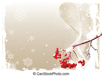 Ash Tree Branch Winter Background
