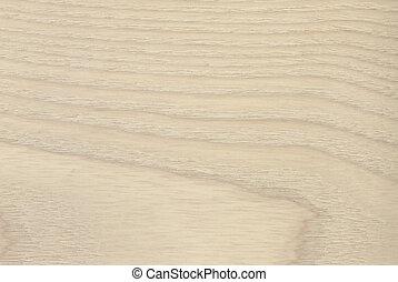 Ash tree wood texture