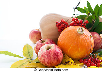 ashberry, feuilles, automnal, potirons, pommes, automne